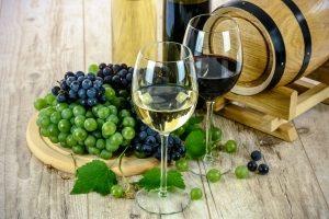 19th annual wine festival