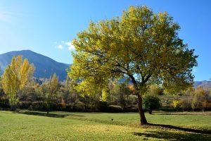 appalachian outdoor photography