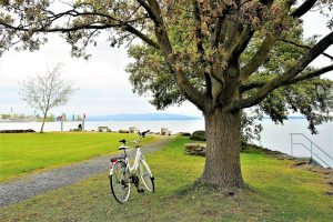 New Park Project at Smith Mountain Lake