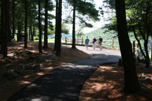 smith mountain lake visitors center